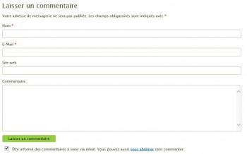 Le formulaire de commentaire du site