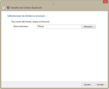 Choix du fichier à transférer