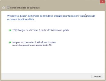 Choisissez de télécharger les fichiers depuis Windows Update