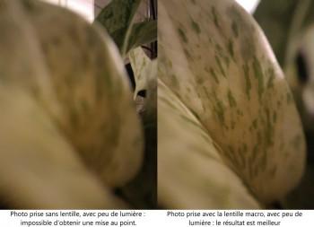À gauche, une photo sans lentille, à droite une photo avec la lentille macro d'Aukey