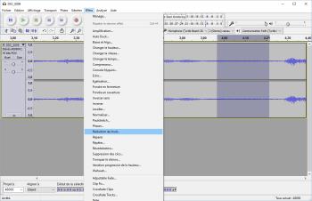 Sélectionnez une partie du fichier contenant uniquement du bruit