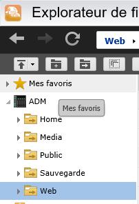 Une fois le serveur Web activé, un dossier Web sera créé sur le NAS
