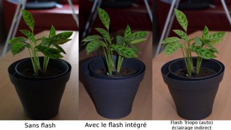 Comparaison de photos avec et sans le flash Triopo